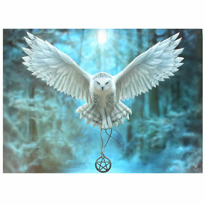Fantasy Gothic Art Canvas Wall Plaque~Awake Your Magic~by Anne Stokes~45~uk