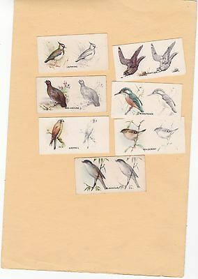 Godfrey Phillips Part Set 13/50 Bird Painting. Issued.1938