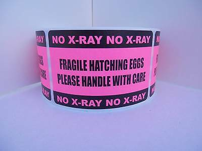 250 FRAGILE HATCHING EGGS HANDLE with CARE NO X-RAY 2x3 sticker label fluor pink