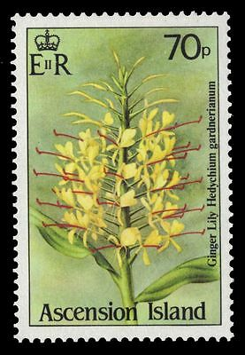 """ASCENSION 384 (SG392) - Wildflowers """"Ginger Lily"""" (pf30810)"""