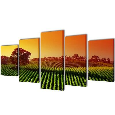 New Set of 5 Panel Canvas Wall Art Print Painting Picture Set Fields 100x50cm