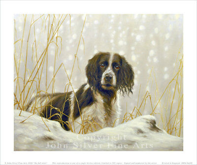 WORKING SPRINGER SPANIEL. SIGNED & NUMBERED LTD EDITION PRINT by JOHN SILVER. BA