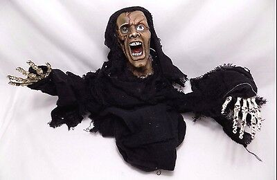 Animated Flailing Ghoulish Witch Sounds Light Up Eyes Halloween Decor Motion
