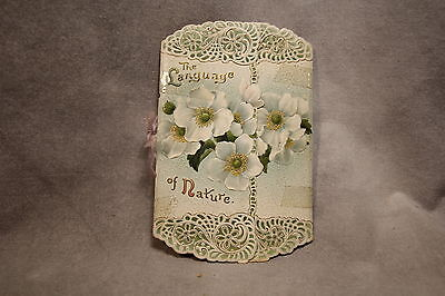 The Language of Nature Colorful Victorian Booklet Flowers Birds Poem Easter