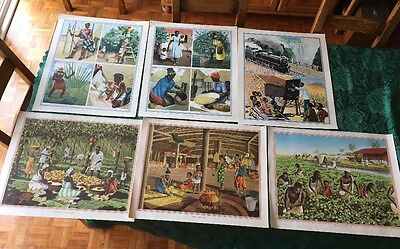 6 Macmillan School Posters.Africa Related..