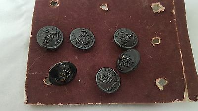 Lot of 4 Hilborn Hamburger Navy Buttons and 2 W.C 1812 Screw Back Navy Pins