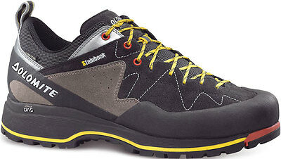 Dolomite Steinbock Approach GTX Hiking Shoes