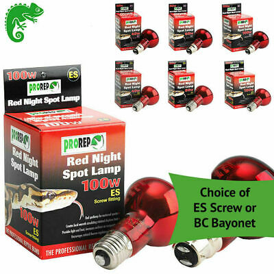 ProRep Reptile Bulb Heat Basking Red Night Light Nocturnal Spot Lamp 40 60 100w
