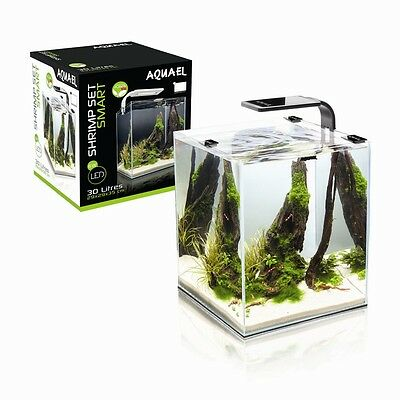 Shrimp Set Smart Led 10 Black Aquael Caridine Pesci Piante Acquario Completo