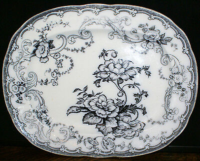 William Adams & Sons Ironstone 1850's * Large CANOVA Serving Platter