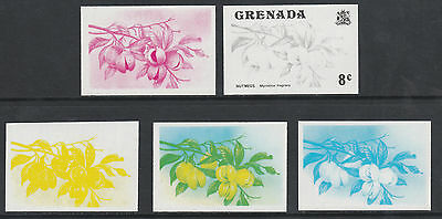 Grenada 2592 - 1975 Nutmegs 8c set of 5 PROGRESSIVE PROOFS unmounted