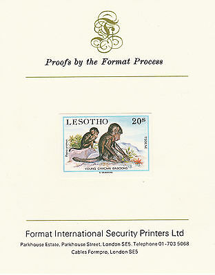 Lesotho 2638 - 1984 Chacma Baboons on Format International PROOF  CARD