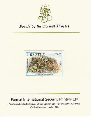 Lesotho 2639 - 1984 Young Red Hares on Format International PROOF  CARD
