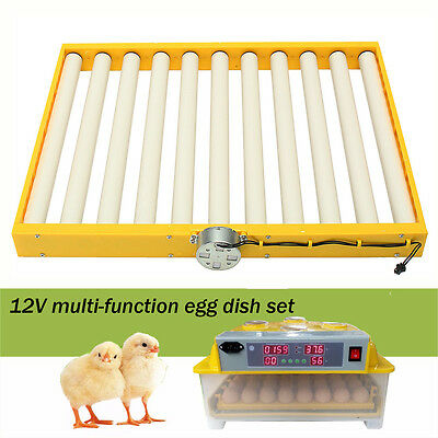 Newest Design Chicken Quail Bird Eggs Tray for Poutry 110V Incubator AUTOMATIC