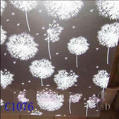 90cmx5m Dandelion Privacy Frosted Frosting Removable Glass Window Film c1076