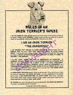 Rules In An Irish Terrier's House