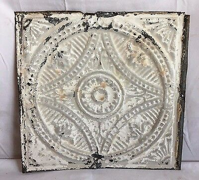 "Reclaimed 1890's 12"" x 12"" Antique Tin Ceiling Tile Metal White Vintage 219-17"