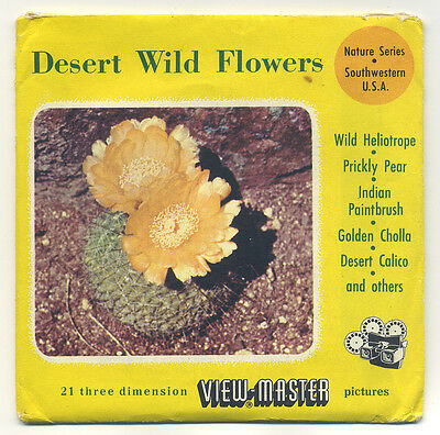 Desert Wild Flowers RARE French Dutch English 1956 ViewMaster with Reels 985-ABC