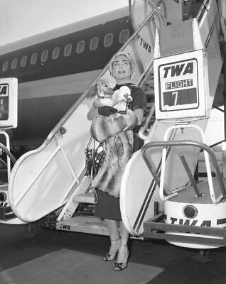 JOAN CRAWFORD candid press photo TWA airplane ORIGINAL 5x4 vintage b/w negative