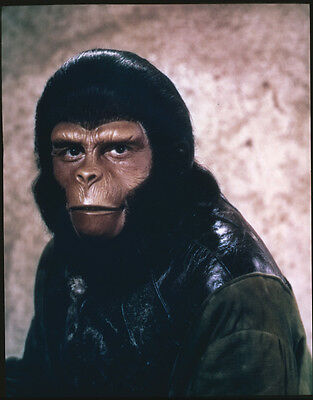 PLANET OF THE APES Roddy McDowall ORIGINAL 5x4 Color Slide Transparency portrait