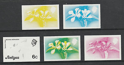 Antigua 2950 - 1976  ORCHID  TREE 6c set of PROGRESSIVE PROOFS unmounted