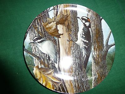 Knowles Plate DOWNY WOODPECKER Kevin Daniel Birds of Your Garden Collection 1987