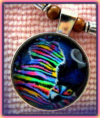 Rainbow CAT KITTEN KITTY Jewelry PENDANT NECKLACE - Beadwork