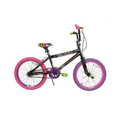 Lil Miss Matched - 20 inch Bike