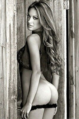 BARN DOOR GIRL 24x36 PINUP POSTER Lingerie NEW/ROLLED!