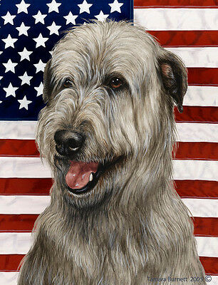 Garden Indoor/Outdoor Patriotic II Flag - Grey Irish Wolfhound 323291