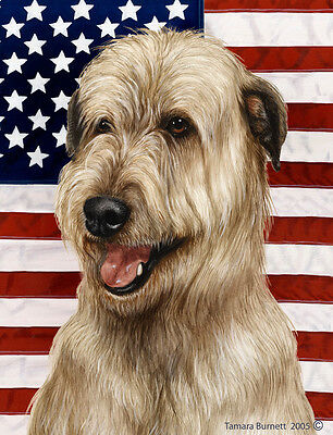 Large Indoor/Outdoor Patriotic II Flag - Fawn Irish Wolfhound 32330