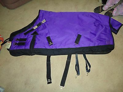 Schneider's 56'' Heavy Turn Out Pony Blanket-Worn Once