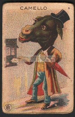 Camel Mailing A Letter c1910 Trade Advertising Card