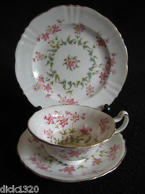 RARE EDWARDIAN POINTONS CHINA HAND-PAINTED # T2375 CUP/PLATE TRIO c.1900's EX