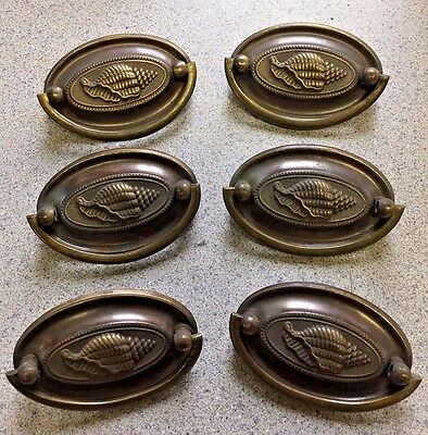 6 Vintage Aged Brass furniture Drawer Pulls Hepplewhite Style Seashell Antique