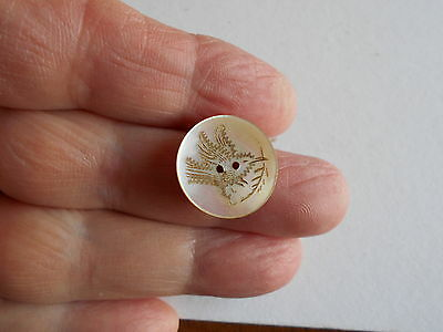 Antique/vintage Wonderful Pearl Button With Etched Bird #169
