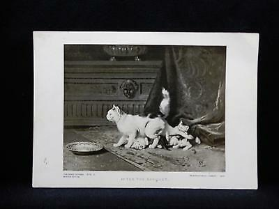 Small Antique Print Perry Pictures by Lambert Cat & Kittens in Dining Room