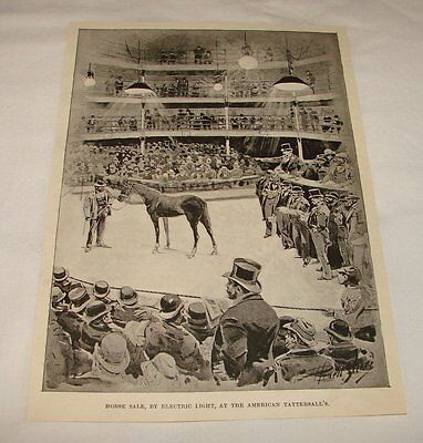 1894 magazine engraving ~ HORSE SALE AT AMERICAN TATTERSALL'S