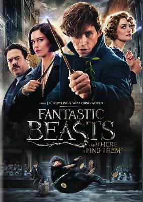 Fantastic Beasts And Where To Find Them Used - Very Good Dvd