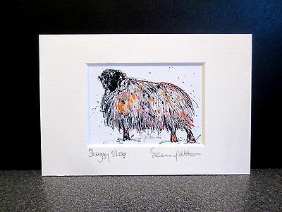 Shaggy Sheep... Mini Art print from an original painting by Suzanne Patterson.X