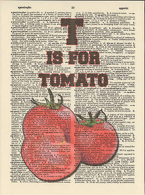 T is for Tomatoes Alphabet Altered Art Print Upcycled Vintage Dictionary Page
