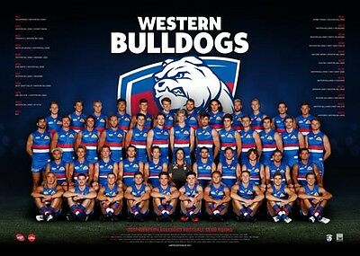 Official AFL Western Bulldogs  2017 Team poster 60cm X 80cm print