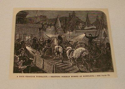 1886 magazine engraving ~ SHIPPING HORSES, Honfleur, Normandy