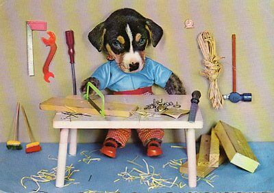 VINTAGE postcard of DRESSED PUPPY DOG - CARPENTER WOODWORK TOOLS
