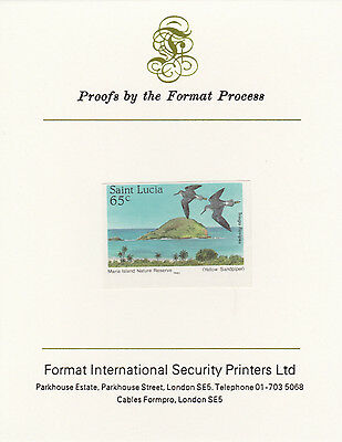 St Lucia 3353 - 1985 Yellowlegs 65c on FORMAT  INTERNATIONAL  PROOF  CARD
