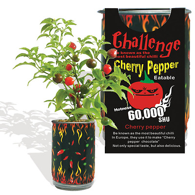 Cherry Pepper Wiri Wiri Growing Kit Can  All Included Grow Your Own Peppers