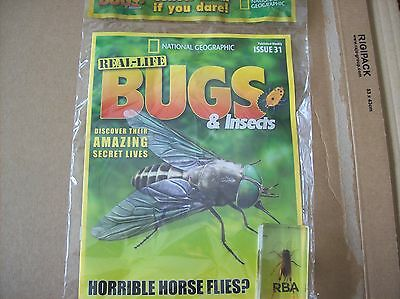 National Geographic Real-life Bugs & Insects magazine Issue 31
