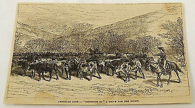 1881 magazine engraving ~ CATTLE HERDERS round up a herd for the night