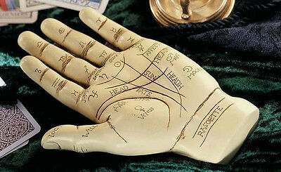 Palmistry Hand Sculpture for Palm Reading with Instructions Gift Idea PD9903 NEW