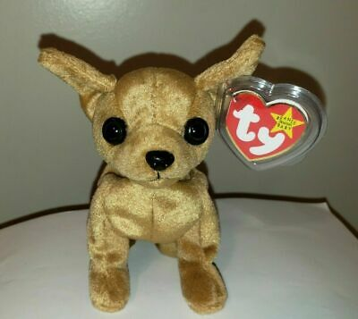 0b4a1f785a6 TY BEANIE BABY ~ TINY the Chihuahua Dog (5 Inch) MWMT -  9.90